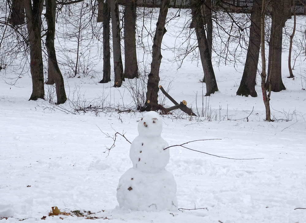 Iarna in Sub Arini