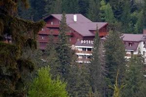 Hotel Hohe Rinne Hotel & Spa